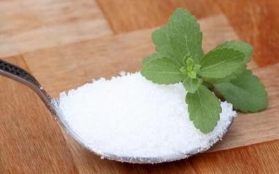 Cara Membuat Gula dari Daun Stevia